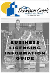 Business Licensing Information Guide